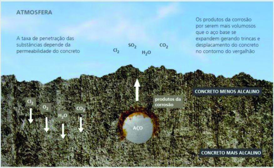 Figura 01: Penetração de elementos corrosivos no concreto